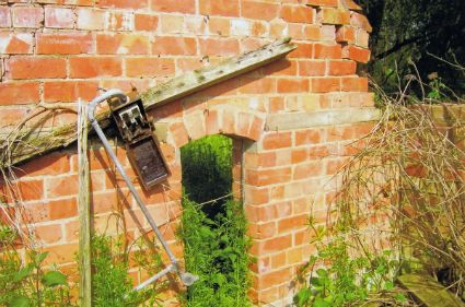 Vestiges of the electrical installation in the ruined Pump House